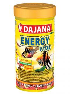 ENERGY VITAL