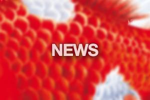 NEWS_banner_fin_cerbvena