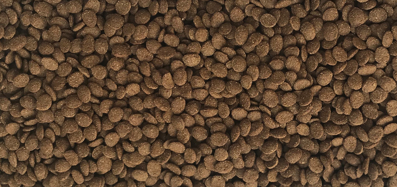 Image result for dajana pet turtle chips 250 ml